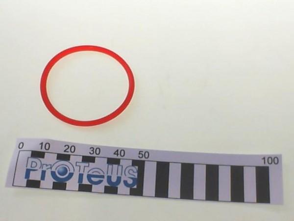 O-Ring (EX-02 110 002 25) - 02 110 002 49