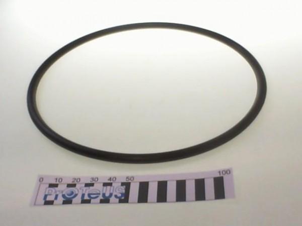 O Ring  - 01 160 003 25